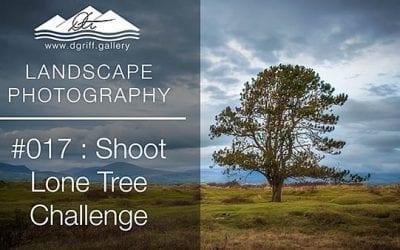 #017: Lone Tree Challenge, Newborough