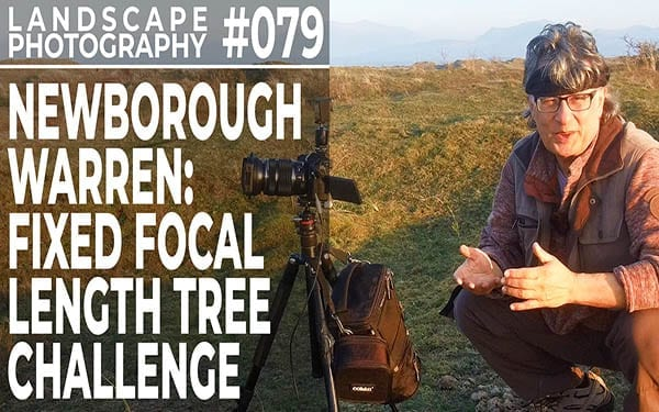 #079: Landscape Photography Tree Challenge. Newborough Warren, Anglesey